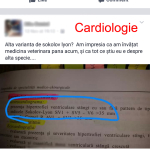 cardio-1