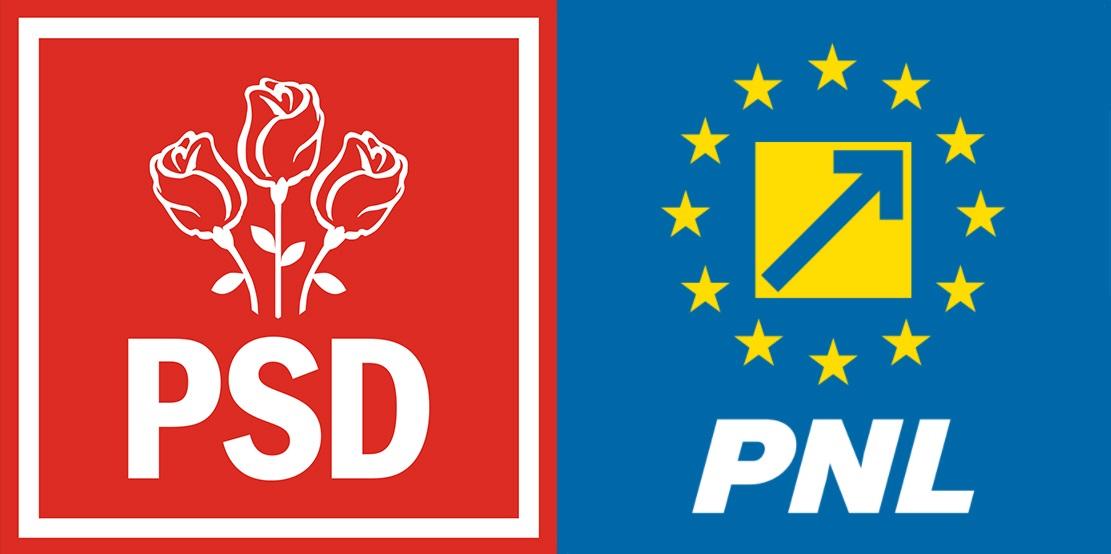 PSD și PNL blochează activitatea organizațiilor non-guvernamentale și limitează libertatea de asociere